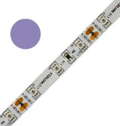 Color LED pásek WIRELI 3528  60 404nm 4,8W 0,4A 12V (fialová - purpurová do modr-Standardní barevný LED pásek malého výkonu a netradiční barvy.
