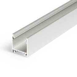 Profil WIRELI LINEA20 EF/TY stříbrný elox, 2m (metráž)-Moderní profil pro stropní liniová LED svítidla.